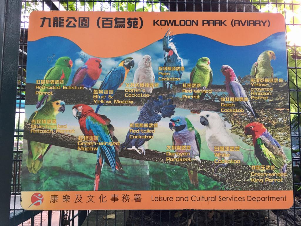 九龍公園内「百鳥苑」で鳥観察〜香港は無料でないと鳥だけで客は来ないのかもしれない