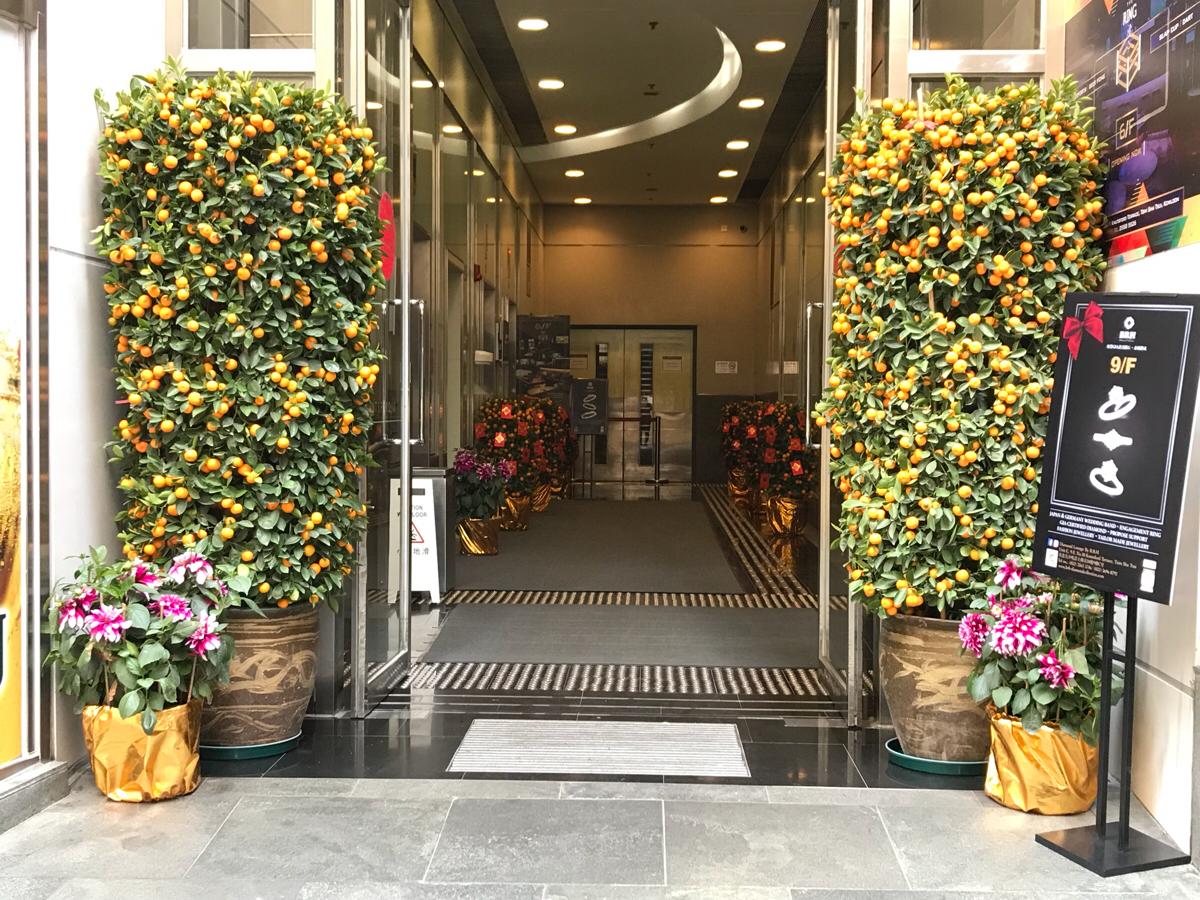 建物の入り口に置かれる金桔(金柑)の鉢植えを見ると、香港にお正月が近づいたと感じます