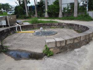 なぜか古井戸で鯉が飼育されていた~香港歴史散歩@屏山文物徑(Ping Shan Heritage Trail)(6)