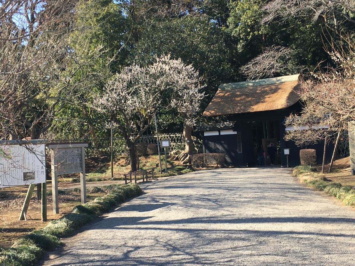 はじめての水戸観光 (2)偕楽園で「梅」と「ゆるキャラ」鑑賞をしました