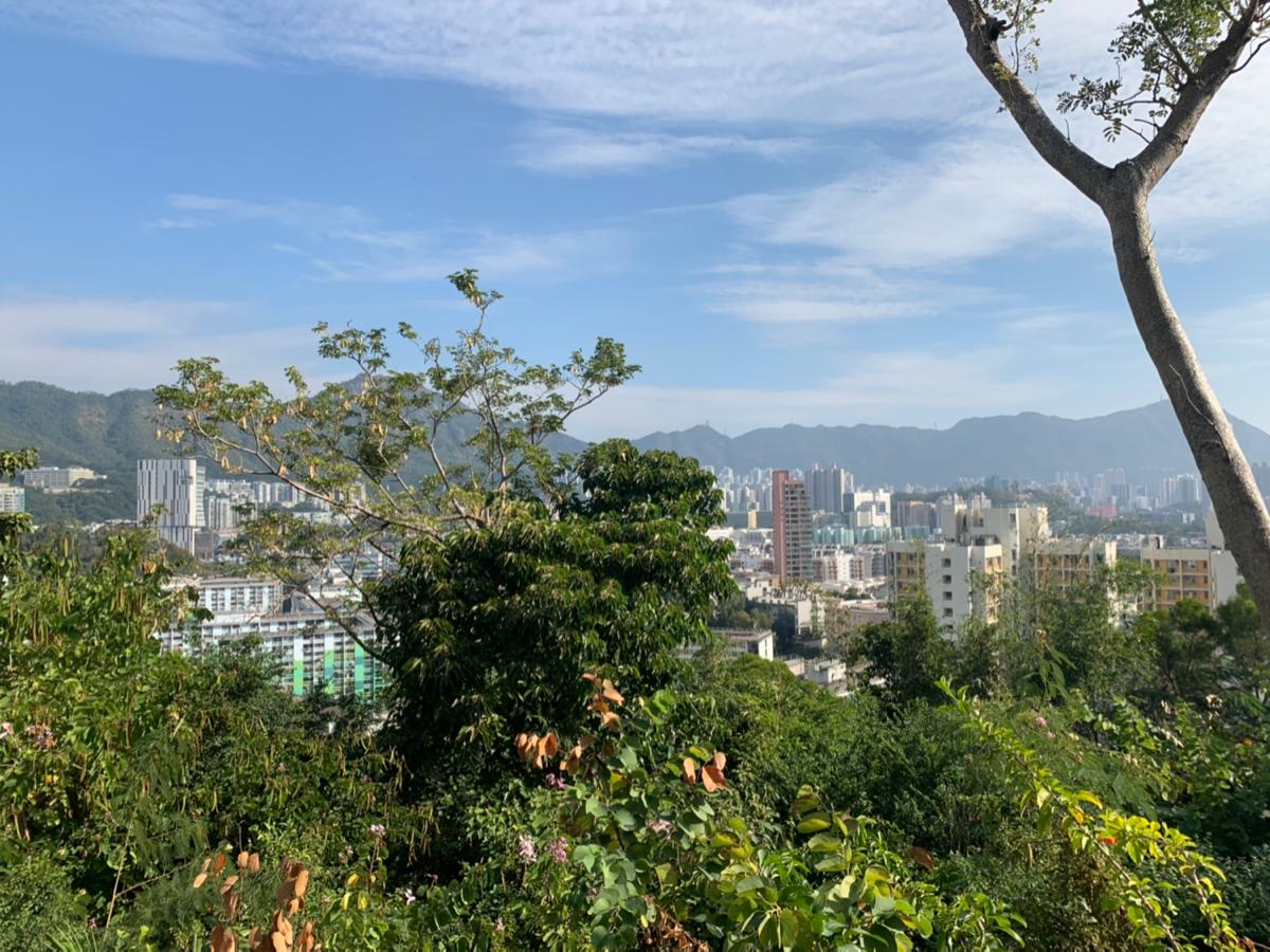 石硤尾山@ 石硤尾(Shek Kip Mei)〜香港の小さな山に登ってみた