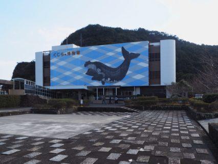 太地町立くじらの博物館を見学して、クジラの大きさに驚いたり捕鯨について考えてみたりした