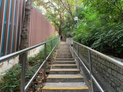 仕事はじめに九龍公園の公園のお散歩も再開した