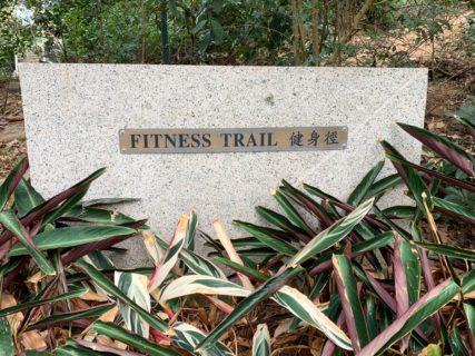 朝に九龍公園の「フィットネストレイル」をお散歩するのが最近の貴重な運動