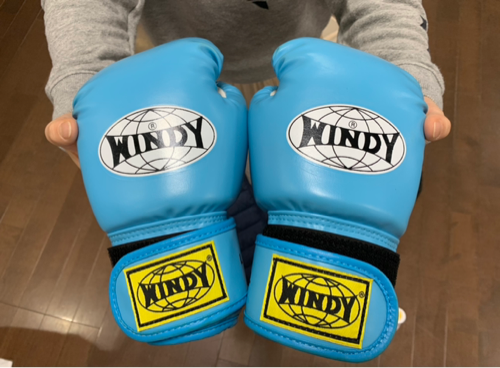 ボクシングをはじめようか考えている