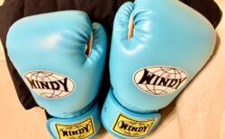 「五十の手習い」にボクシングをはじめた